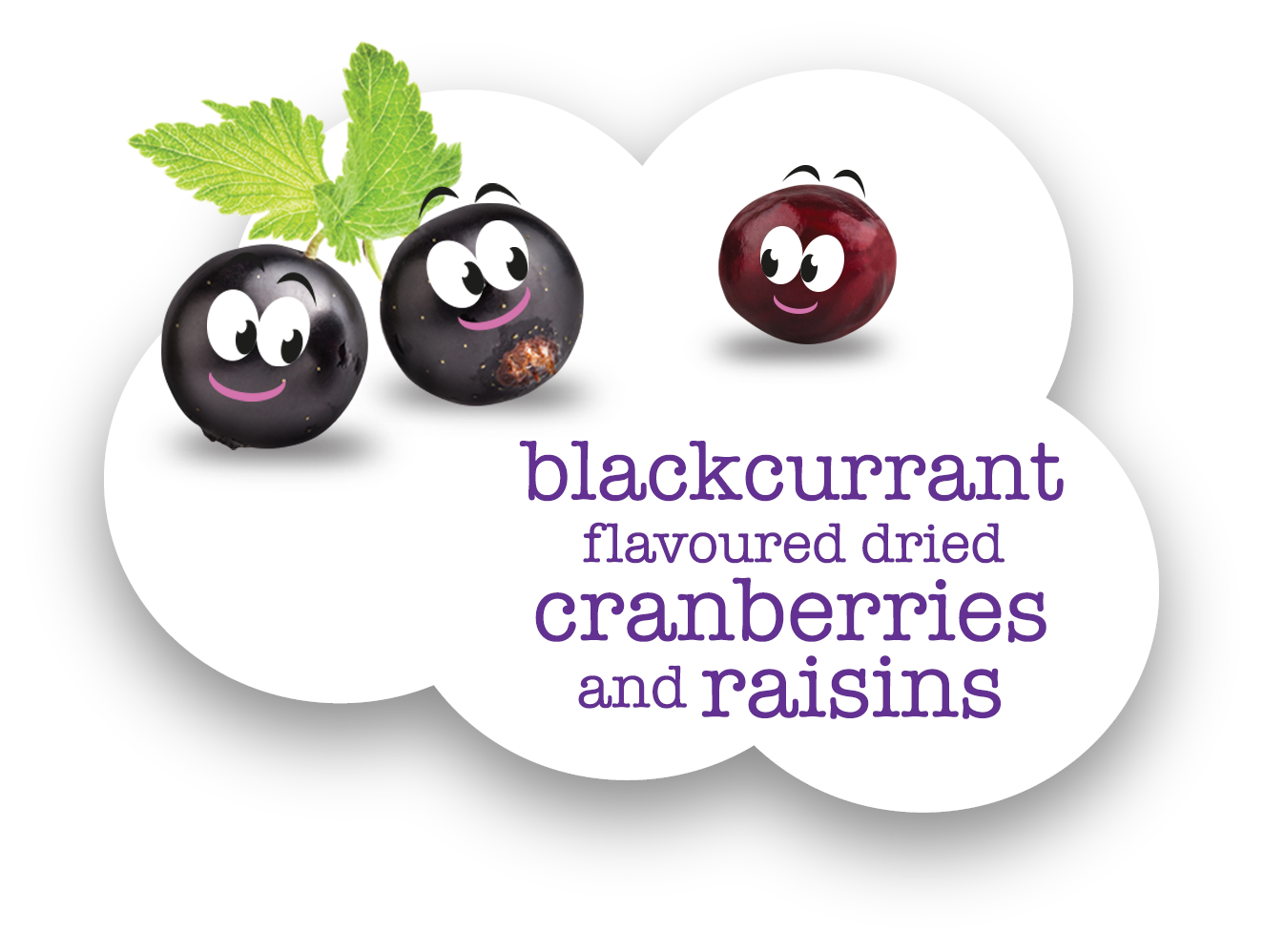 scrummies-landing-page-blackcurrants
