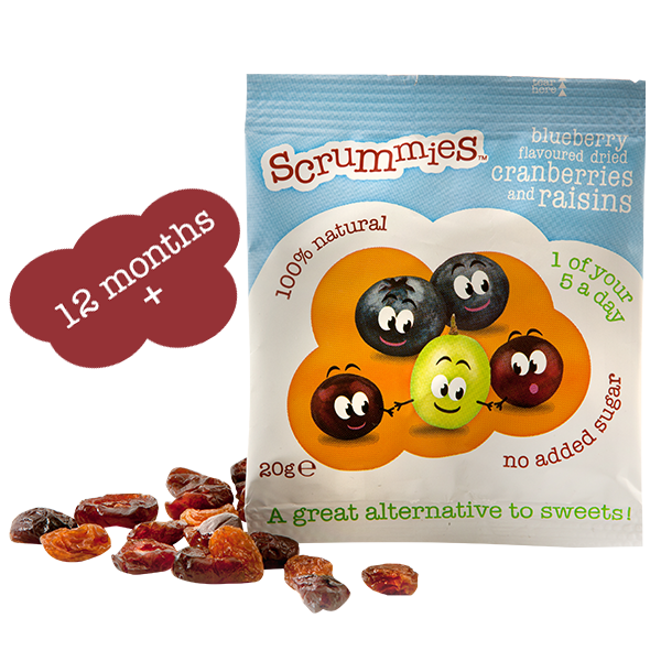 scrummies-blueberry-2