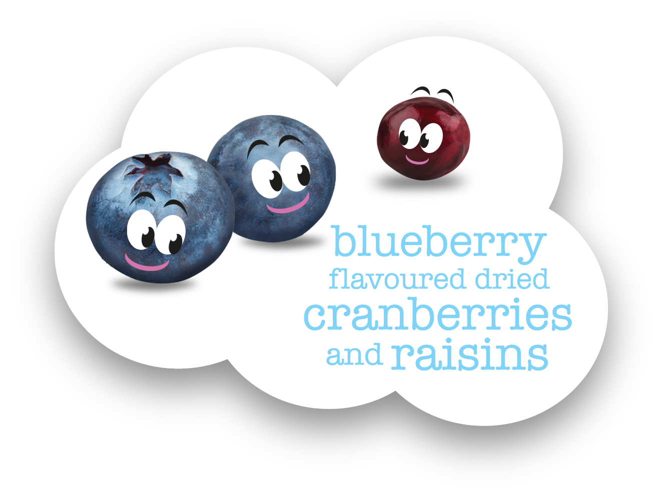 scrummies-landing-page-blueberries